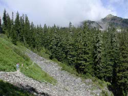 View of the Trail and Silver Peak